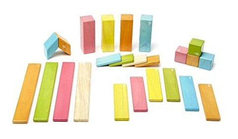 24 Piece  Magnetic Wooden Block Set Tints by Tegu