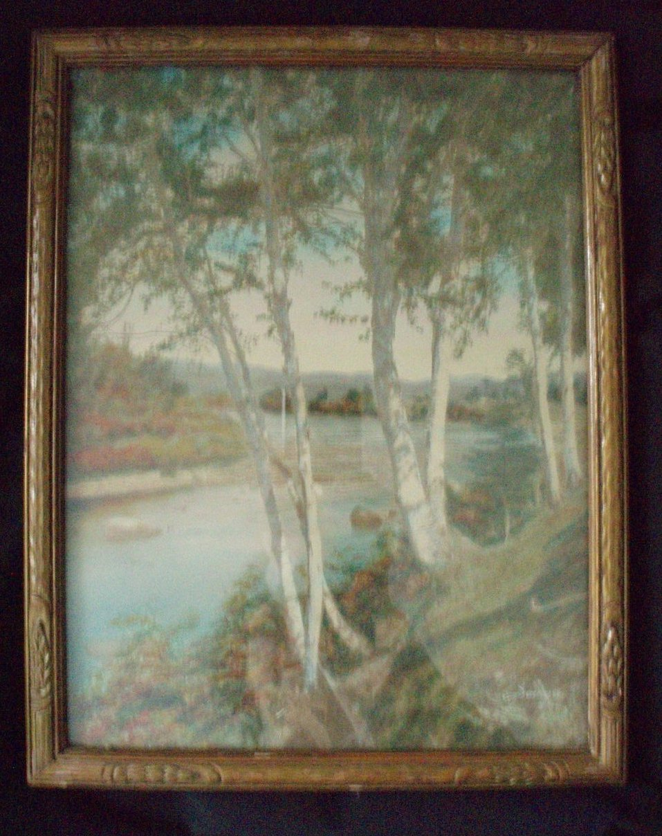 Charles h Sawyer hand tint photo Birches on the Conn.