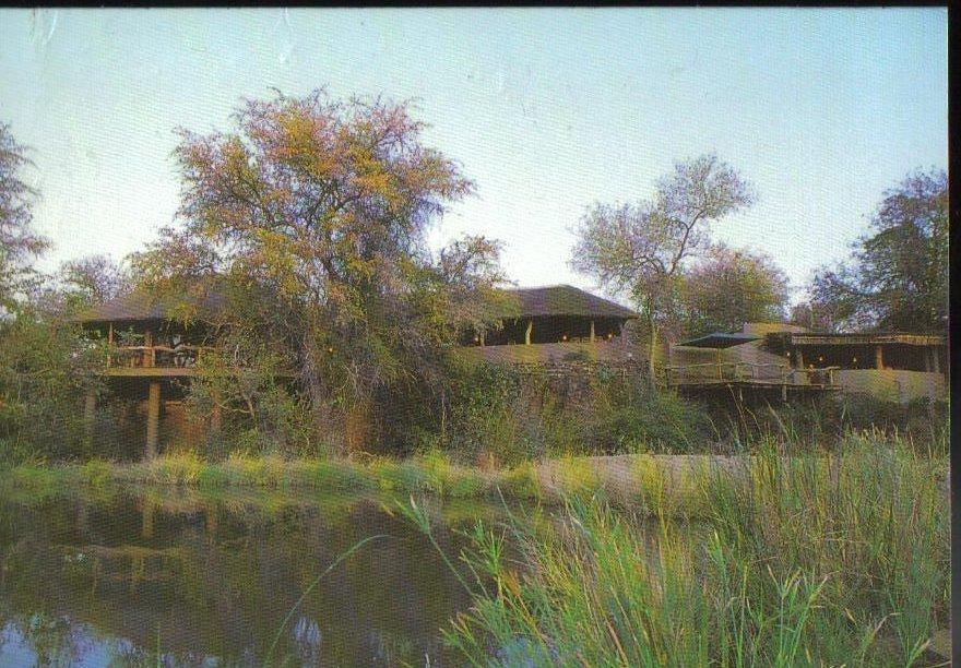 Mashatu Nature Preserve Africa Vintage Postcard