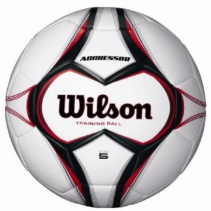 Image 0 of Aggressor Training Soccer Ball Size 3 by Wilson