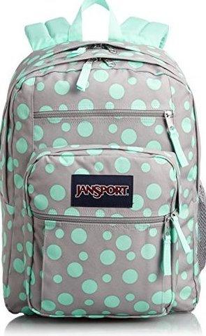 Big Student Classics Series Backpack - Grey Rabbit Sylvia by JanSport
