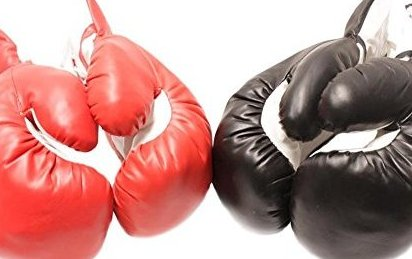 Image 0 of 2 Pair Red and Black 10oz Youth Boxing Gloves Punching by Rex