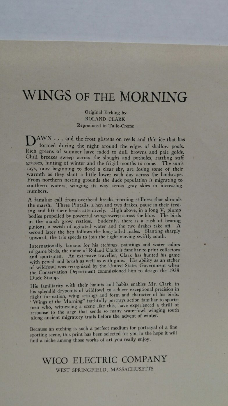 Image 1 of Wings of the Morning