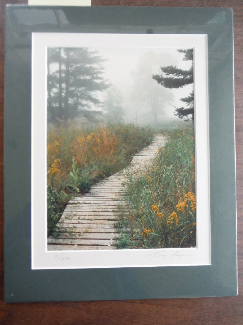 Image 0 of Misty Path (Signed Limited Edition Print)