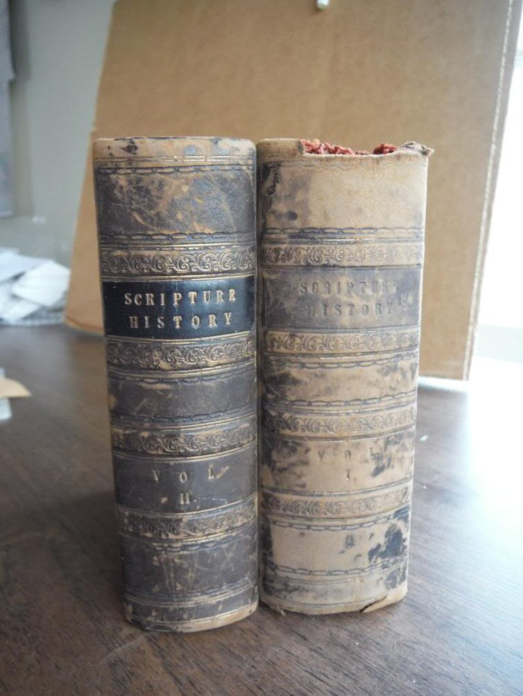 Scripture History Designed for the  Improvement of Youth (Two Vols.)