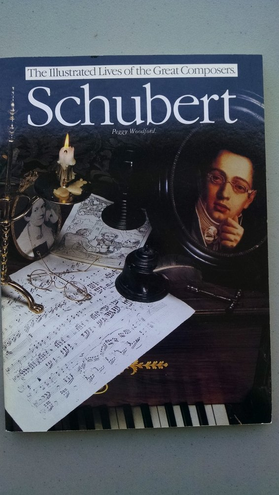 Schubert (Illustrated Lives of the Great Composers)