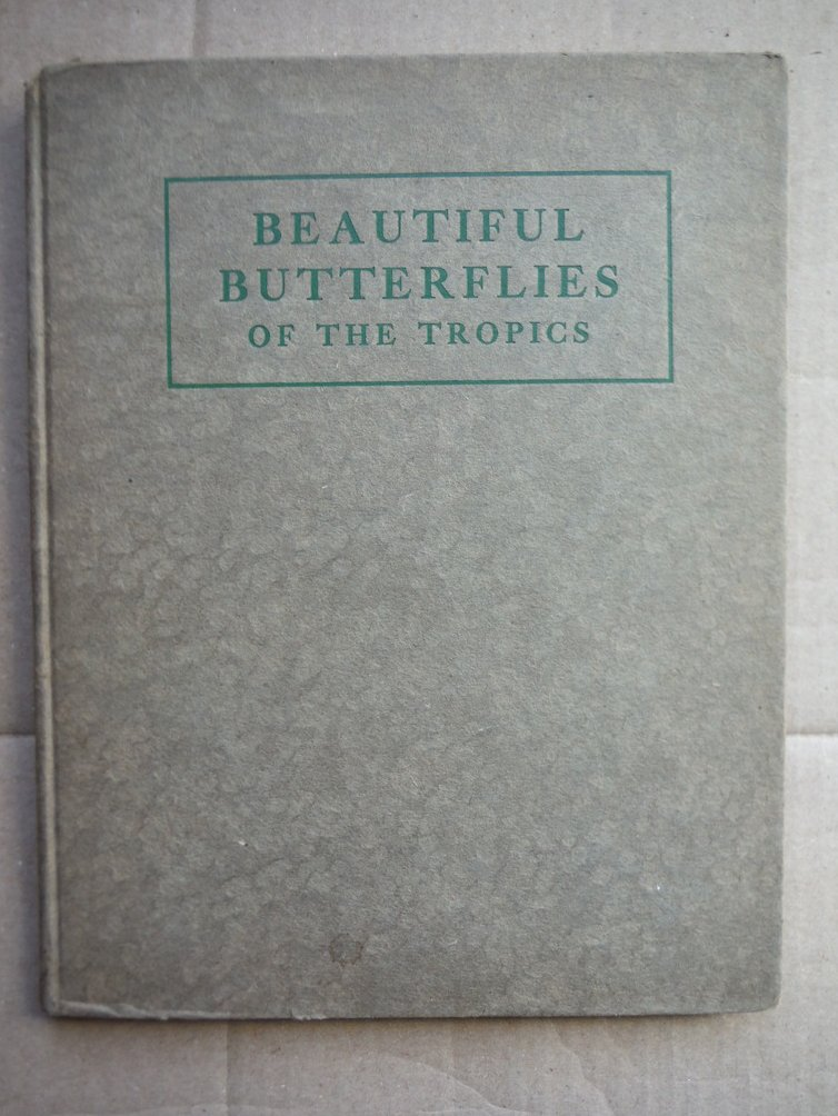 Beautiful Butterflies of the Tropics; how to collect them.