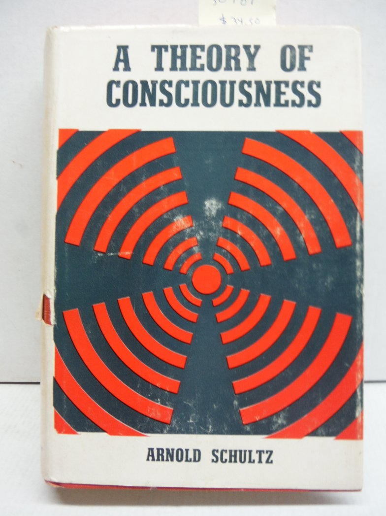 A Theory of Consciousness