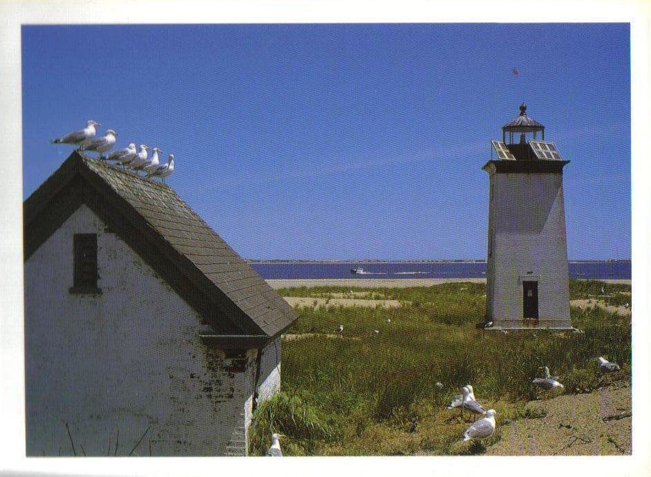 Long Point Lighthouse Massachussetts Postcard