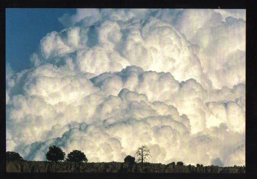 Cauliflower Clouds Weather Phenomenon Postcard
