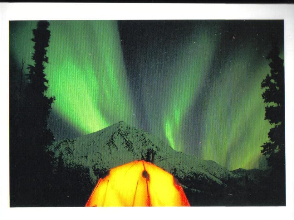 Northern Lights  Alaska Picture Postcard Uncirculated