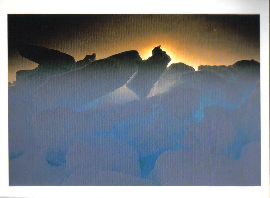Evening Sun Barrow Alaska Postcard
