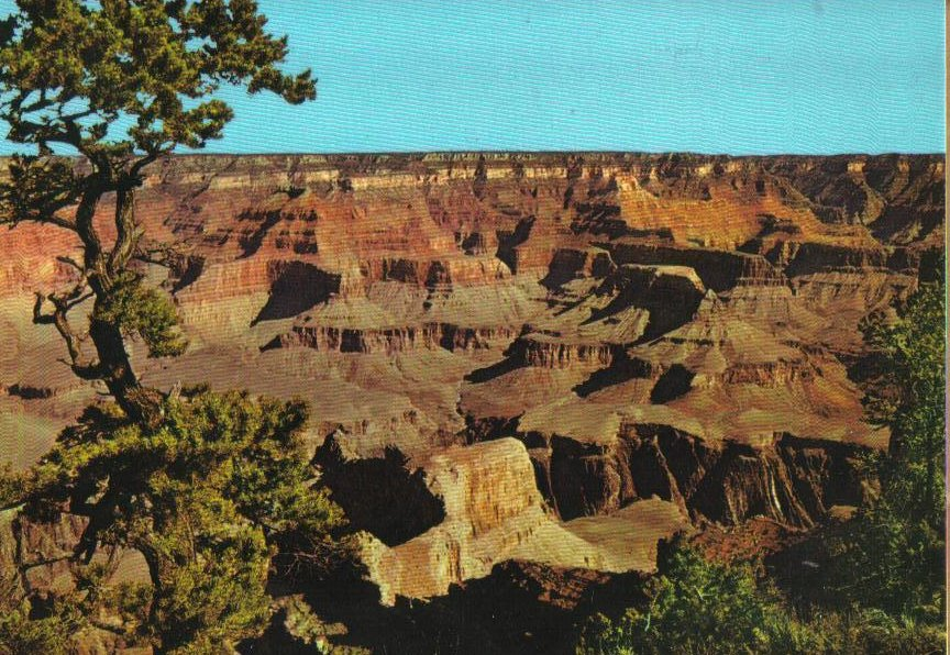 Grand Canyon Arizona Postcard