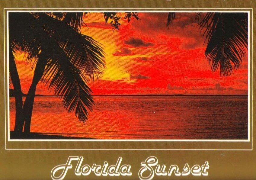 Florida Sunset Vintage Postcard