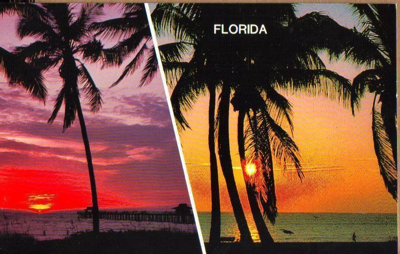 Sunrise Sunset in Florida Vintage Day and Night Postcard