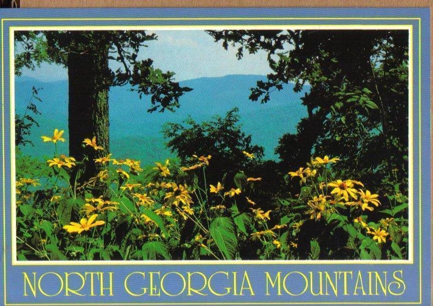 North Georgia Mountains Postcard