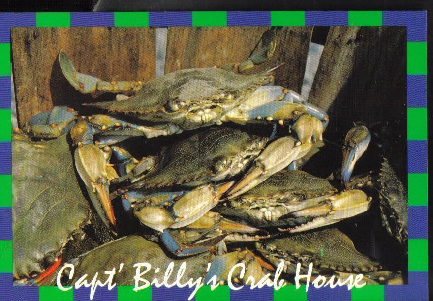 Capt Billys Crab House Popes Creek Maryland Postcard