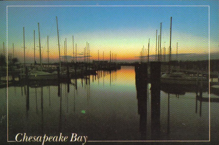 Chesapeake Bay, America's great inland sea, Maryland Postcard