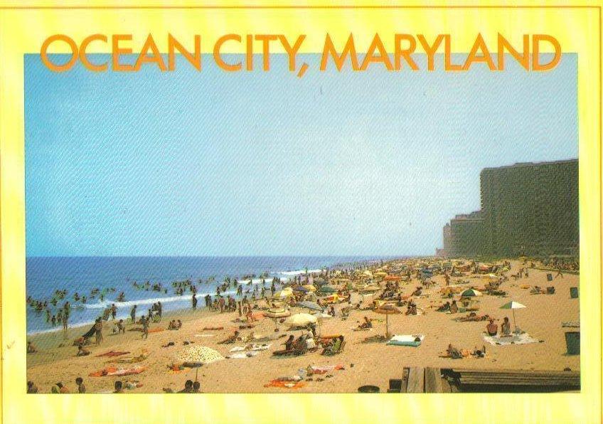 Beach Rd Ocean City