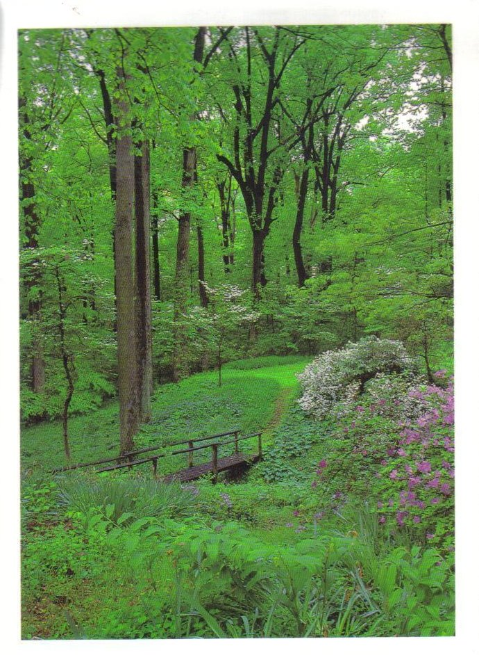 Brooklandville, Maryland Postcard