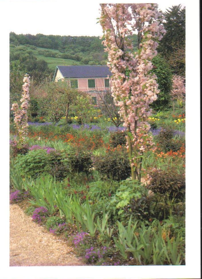 Monet's Gardens Series Japanese Cherry Postcard