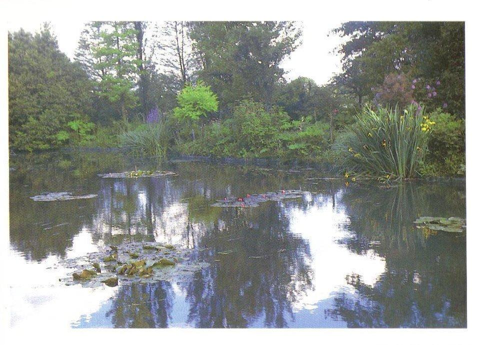 Monet's Gardens Series, Waterlily Garden, Postcard