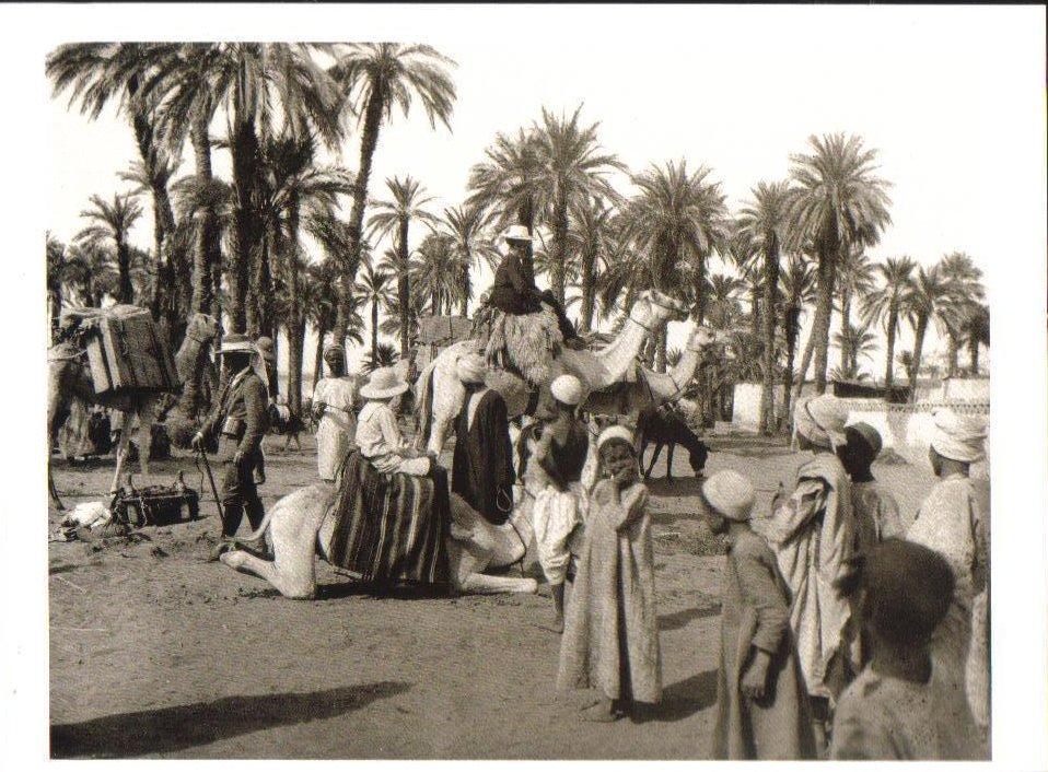 Caravan leaving Amara, Nubia, Sudan Postcard