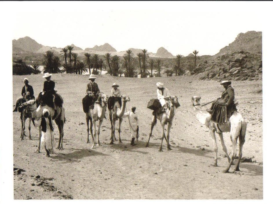 Caravan Near the Second Cataract, Kolba, Sudan Postcard