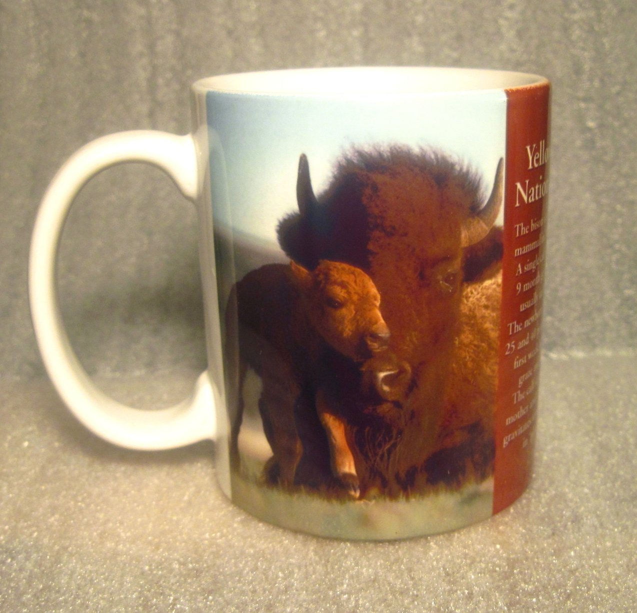 Yellowstone National Park Bison Mother and Child Coffee Cup Mug