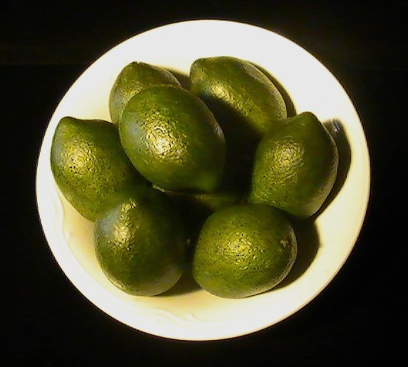 '.Artificial Limes Display.'