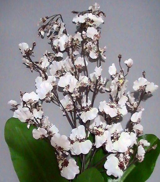 Home Interiors Floral Orchids 13068 Artificial Foliage Arrangement