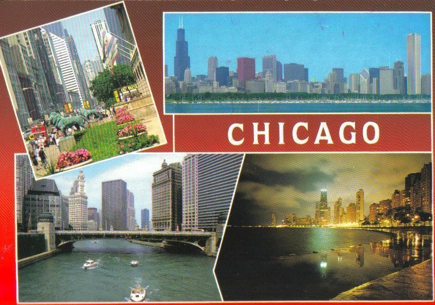The Windy City Chicago, Illinois Postcard