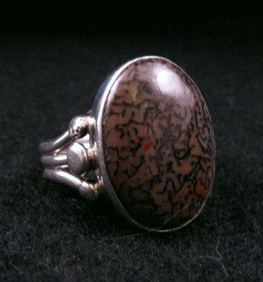 Image 1 of Navajo Orville Tsinnie Dinosaur Bone Silver Ring Sz12