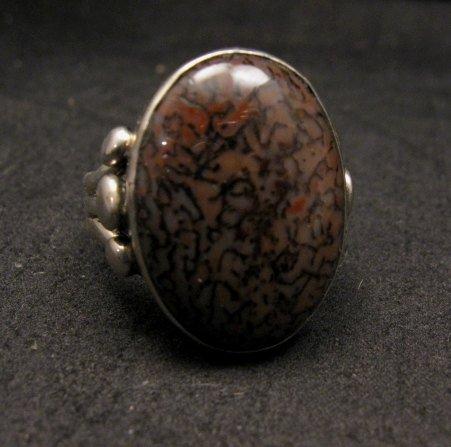 Image 3 of Navajo Orville Tsinnie Dinosaur Bone Silver Ring Sz12
