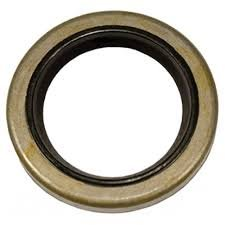 299819S Oil Seal (Magneto Side)