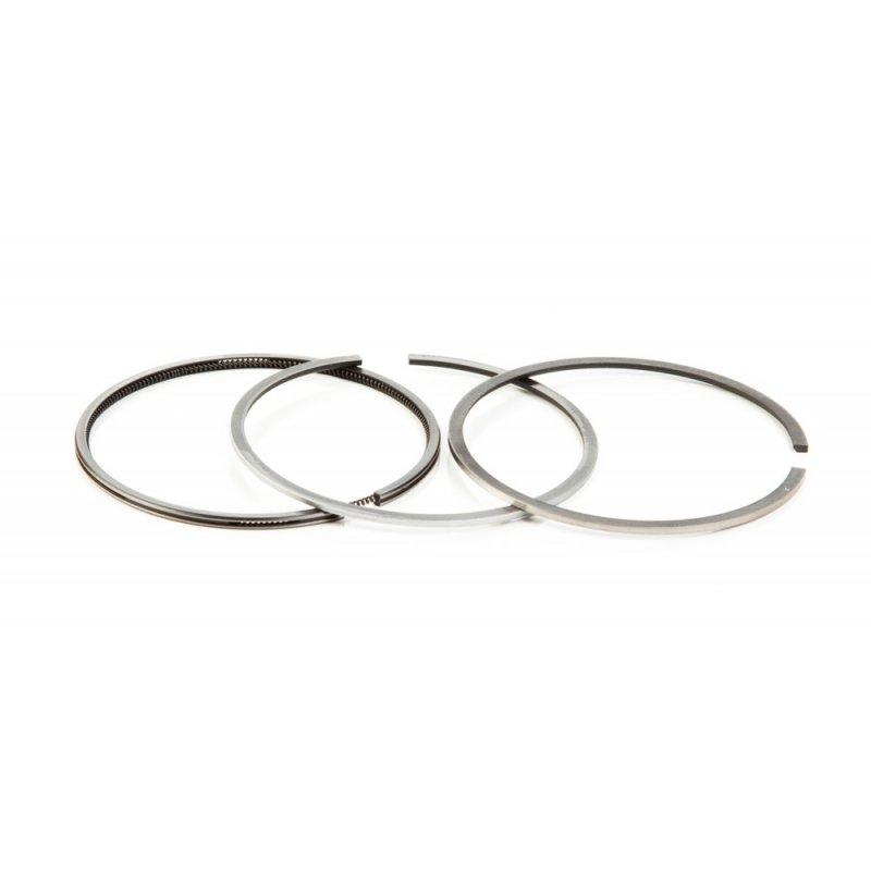 555665 Ring Set (.010 Oversize)