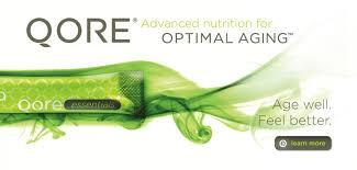 Qore24 Antimicrobial Hand Purifier 8.0 oz
