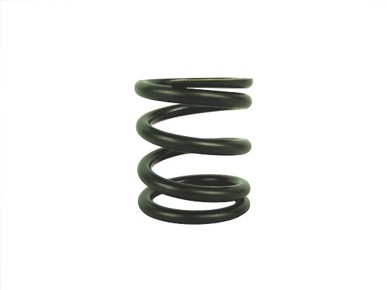 26826 Valve Spring (Intake or Exhaust)