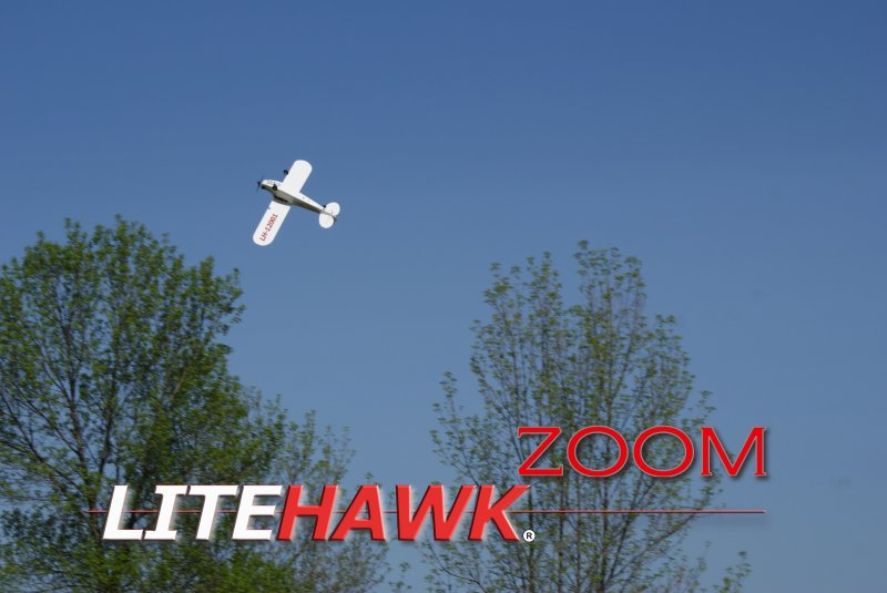 Image 2 of LITEHAWK ZOOM AIRPLANE - 11.8