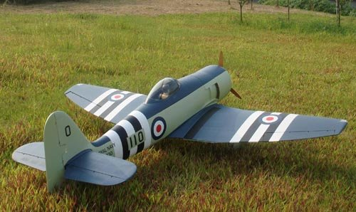 Image 0 of Giant Scale Hawker Sea Fury 95.2 in